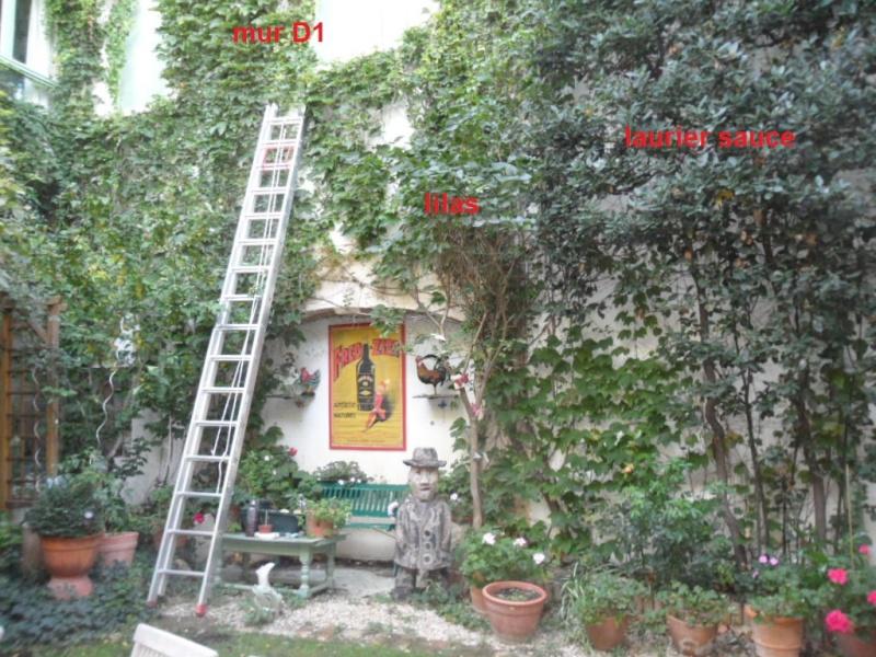 Balcons, Terrasses et Jardins...Plantes et Aménagements... Mur_d110