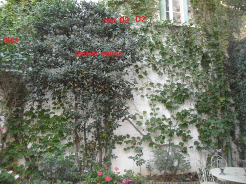 Balcons, Terrasses et Jardins...Plantes et Aménagements... Mur_d210