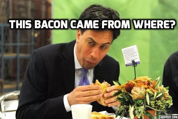 David Cameron and the pig Milipi10
