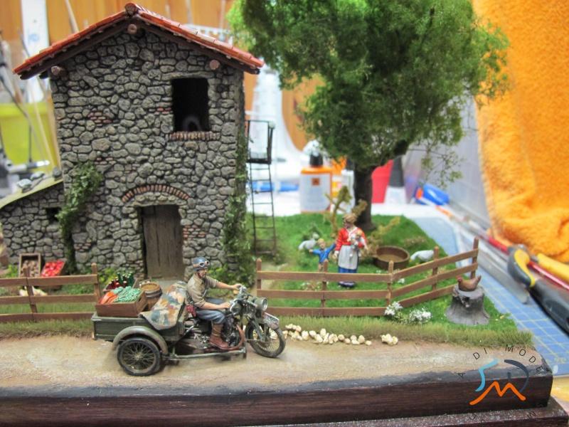 Galleria di Marini Claudio - Pagina 6 Img_4015