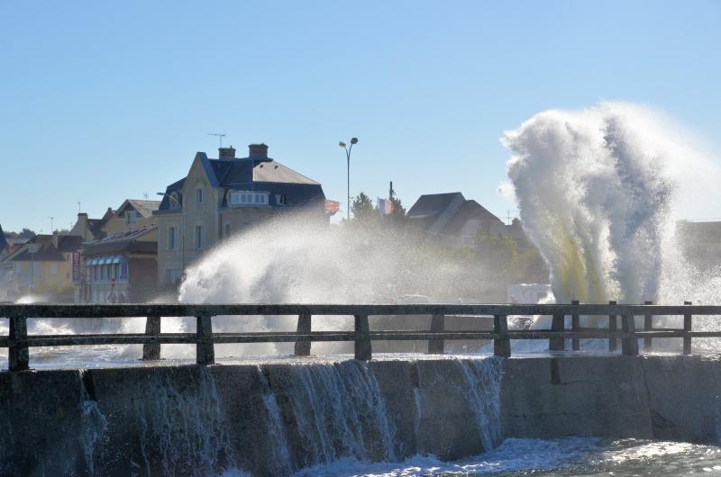 un petit tour en Normandie Dsc_8911
