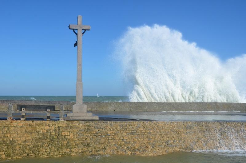un petit tour en Normandie Dsc_9210