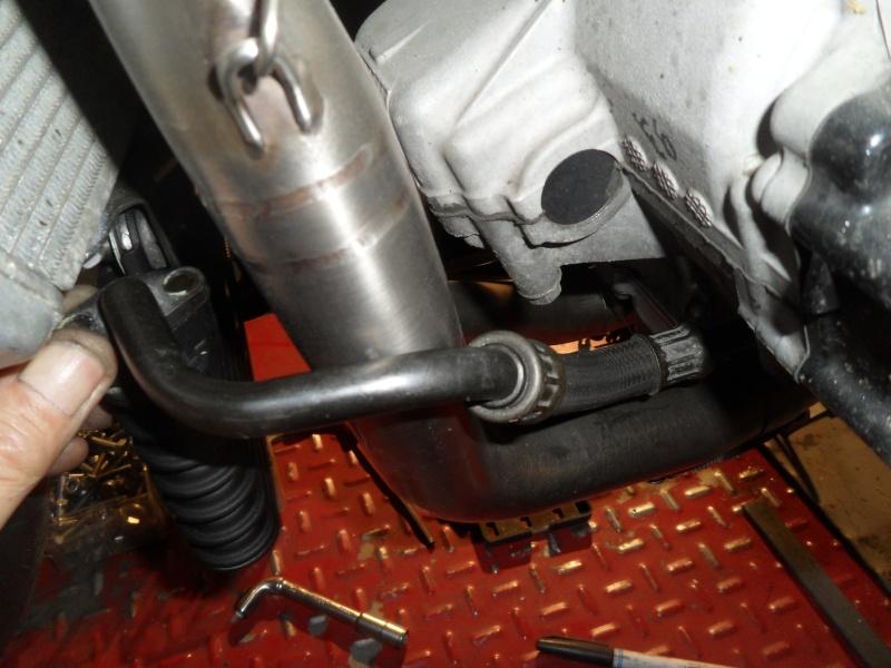 durites radiateur d'huile Sam_9771