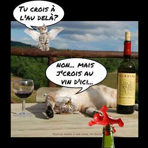 humour - Page 38 12195810