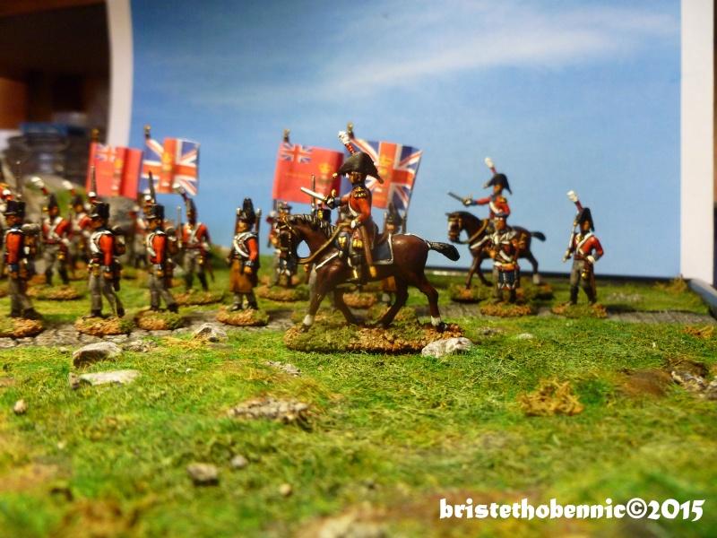 Etat-Major Anglais, boîte Hät 8034, au 1/72. P1070336