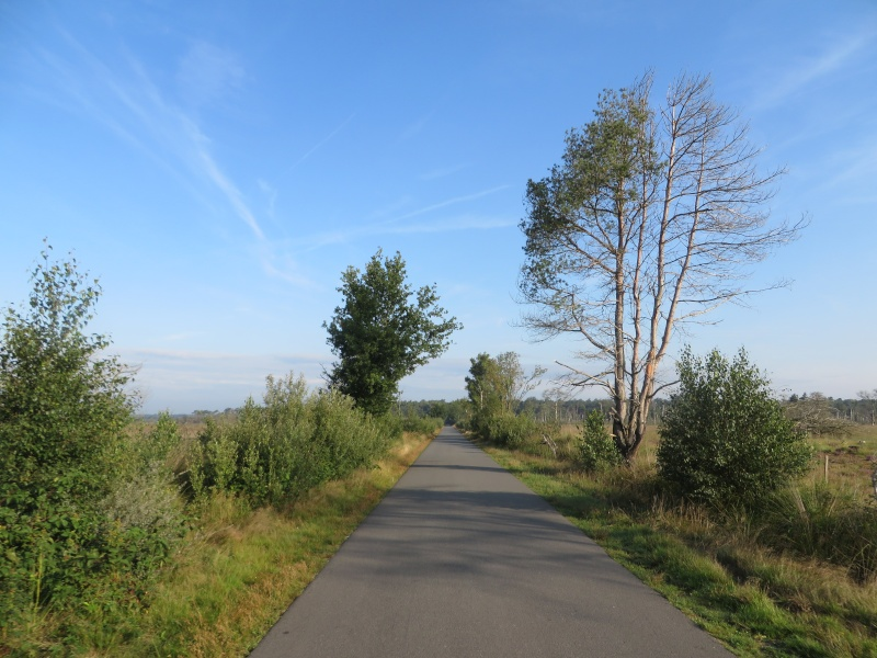 avril 2016: de la Moselle au Rhin  - Page 2 Img_5510