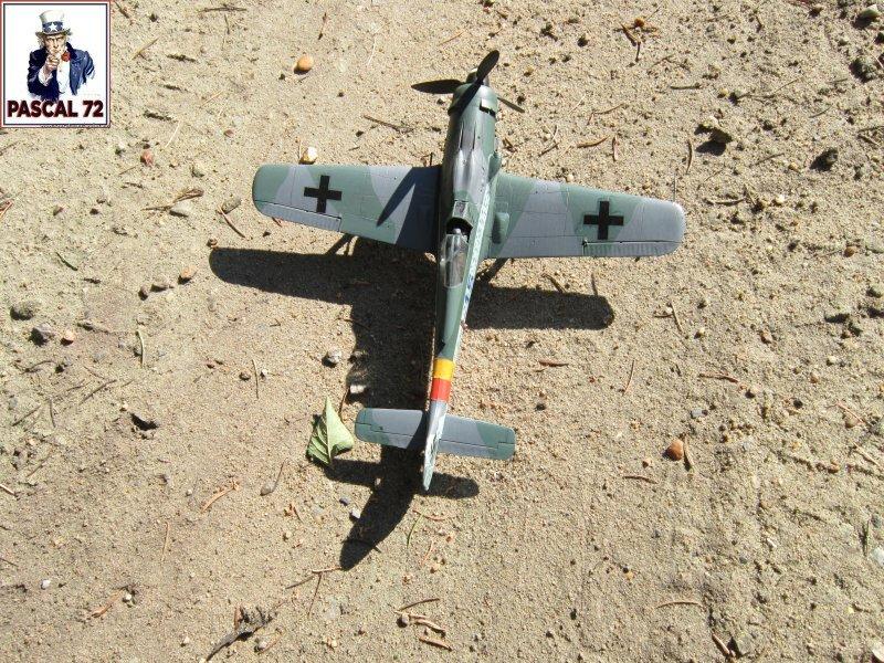 FW 190D9 au 1/48 de Tamiya par pascal 72 Img_5322