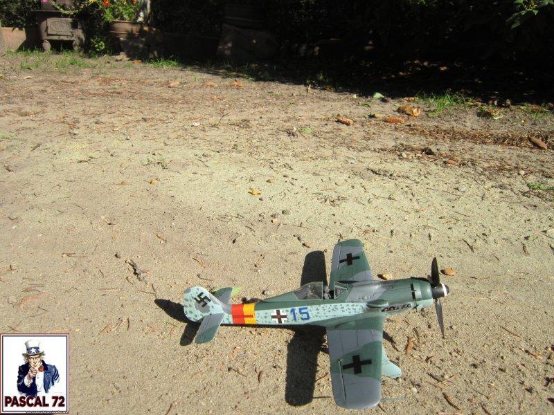 FW 190D9 au 1/48 de Tamiya par pascal 72 Img_5324