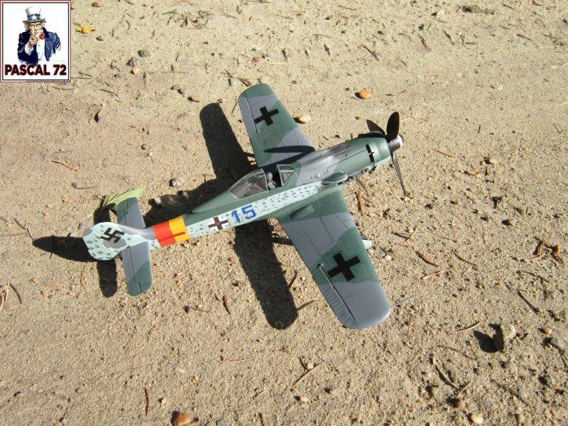 FW 190D9 au 1/48 de Tamiya par pascal 72 Img_5325