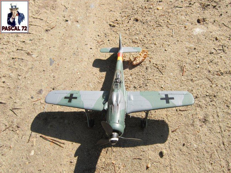 FW 190D9 au 1/48 de Tamiya par pascal 72 Img_5329