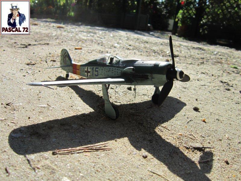 FW 190D9 au 1/48 de Tamiya par pascal 72 Img_5330