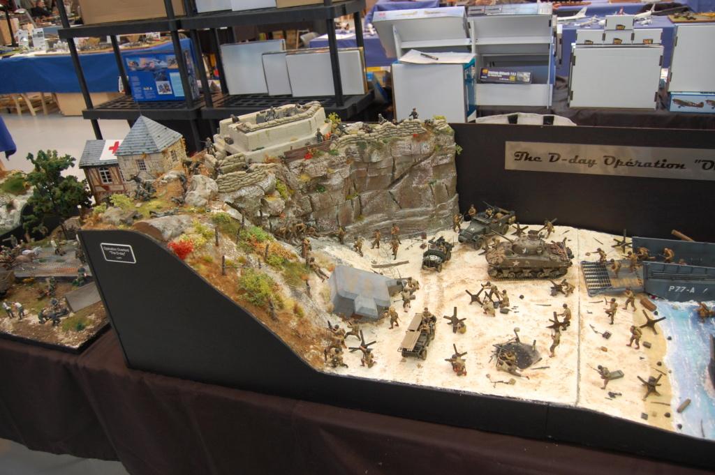 Expo de PALAVAS LES FLOTS, compte rendu ...  Dsc_0063
