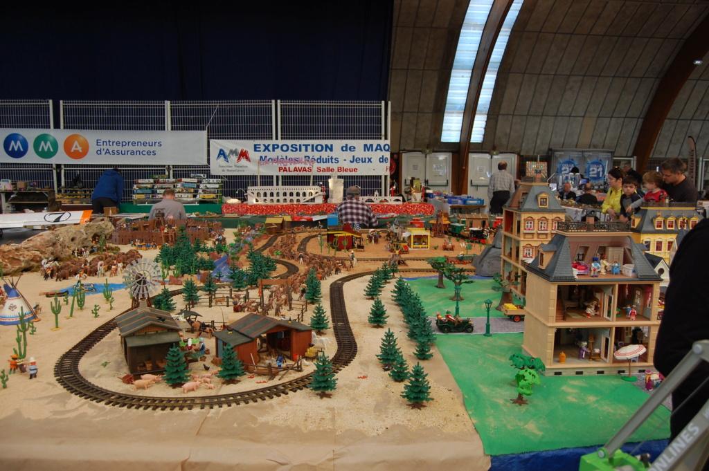 Expo de PALAVAS LES FLOTS, compte rendu ...  Dsc_0079