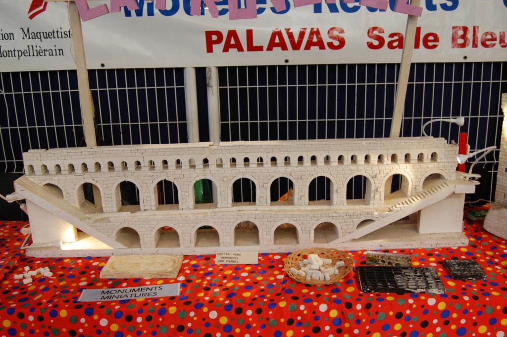 Expo de PALAVAS LES FLOTS, compte rendu ...  Dsc_0102