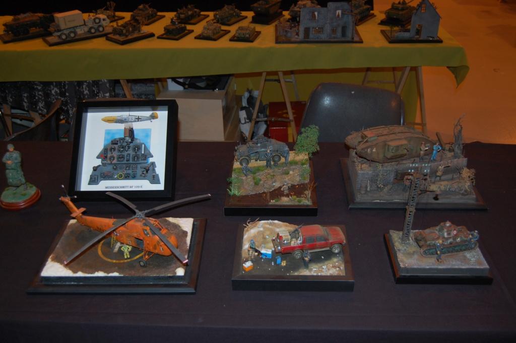 Expo de PALAVAS LES FLOTS, compte rendu ...  - Page 2 Dsc_0226