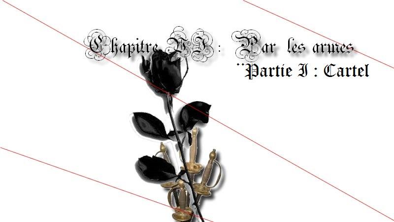 L'univers graphique d'une Rose - Page 3 Chapit12