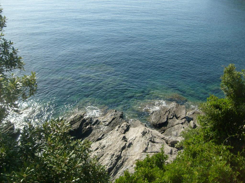 Escale en Corse... - Page 2 S6303232