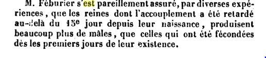 ART DE SOIGNER LES ABEILLES 311