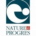 Feuille de cire non gaufrée dans les cadres de hausse Nature10
