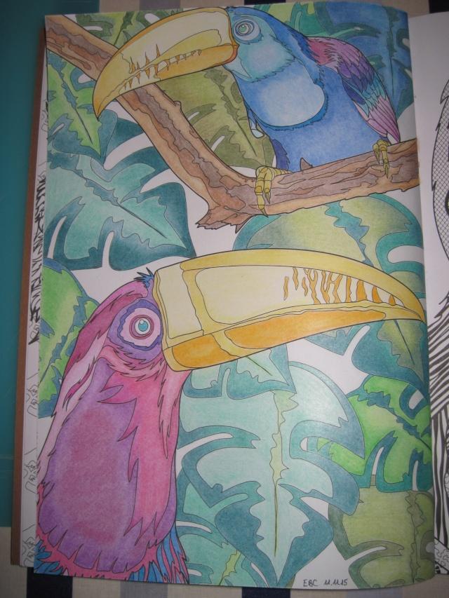 je vous montre enfin (coloriages) - Page 4 Img_6541
