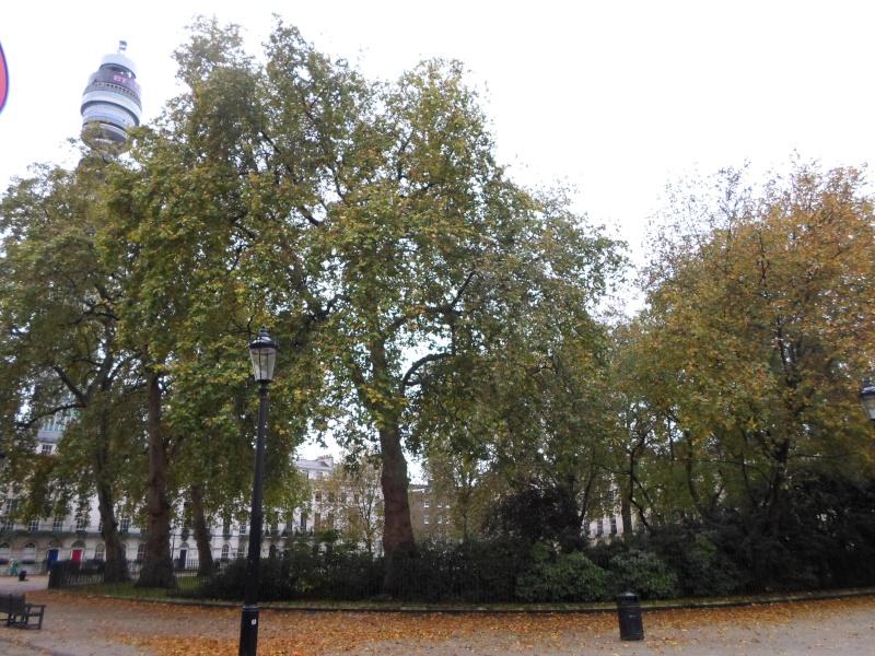 Petite promenade dans Bloomsbury  Sam_1113