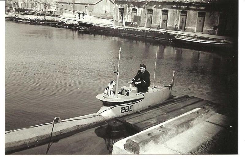 Seehund à la française 19472010