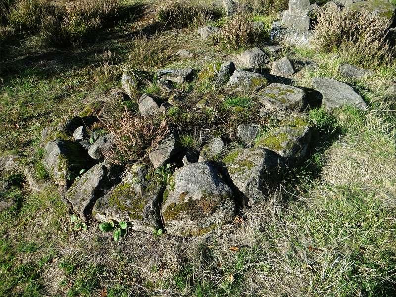 Sortie champignons sur le site gallo-romain de la Croix Guillaume (Saint-Quirin - Moselle) Dsc07719