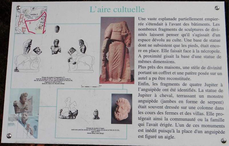 Sortie champignons sur le site gallo-romain de la Croix Guillaume (Saint-Quirin - Moselle) Dsc07910