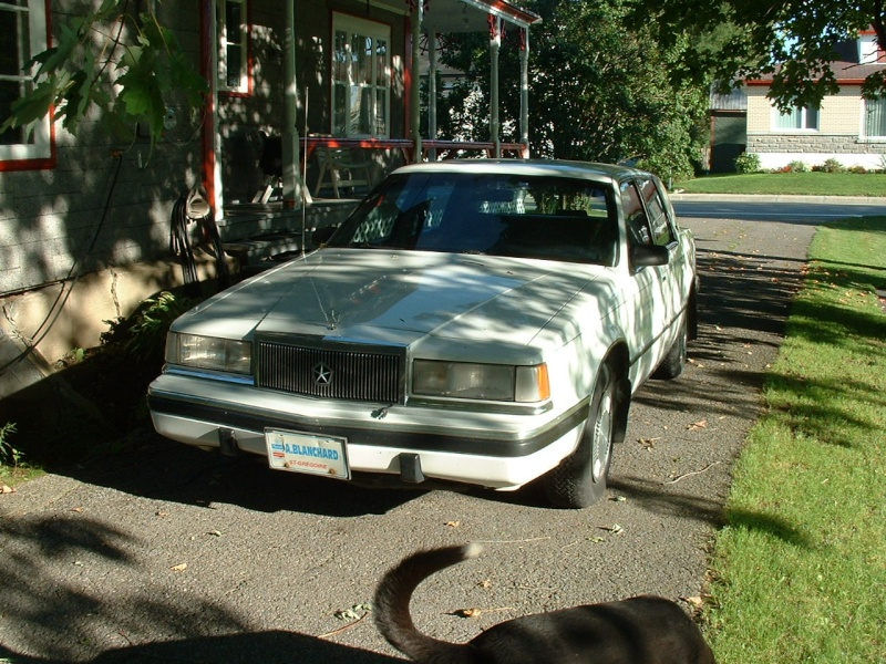 Chrysler Dynasty 1990 VENDU Dynast17