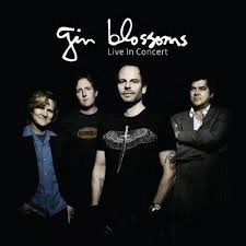 GIN BLOSSOMS Downl215