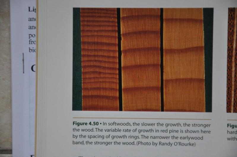 [Connaissance du bois] Les differentes qualités et usages des bois Dsc_0023