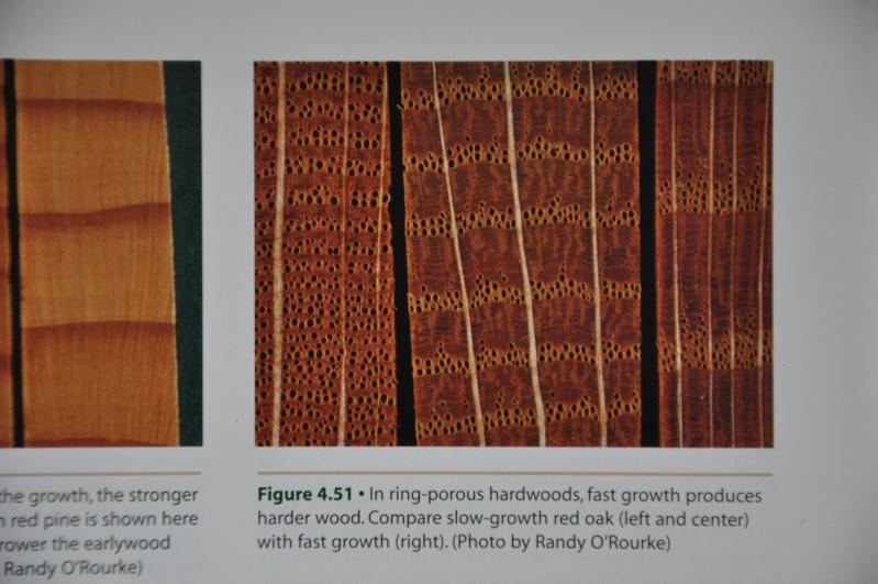 [Connaissance du bois] Les differentes qualités et usages des bois Dsc_0024
