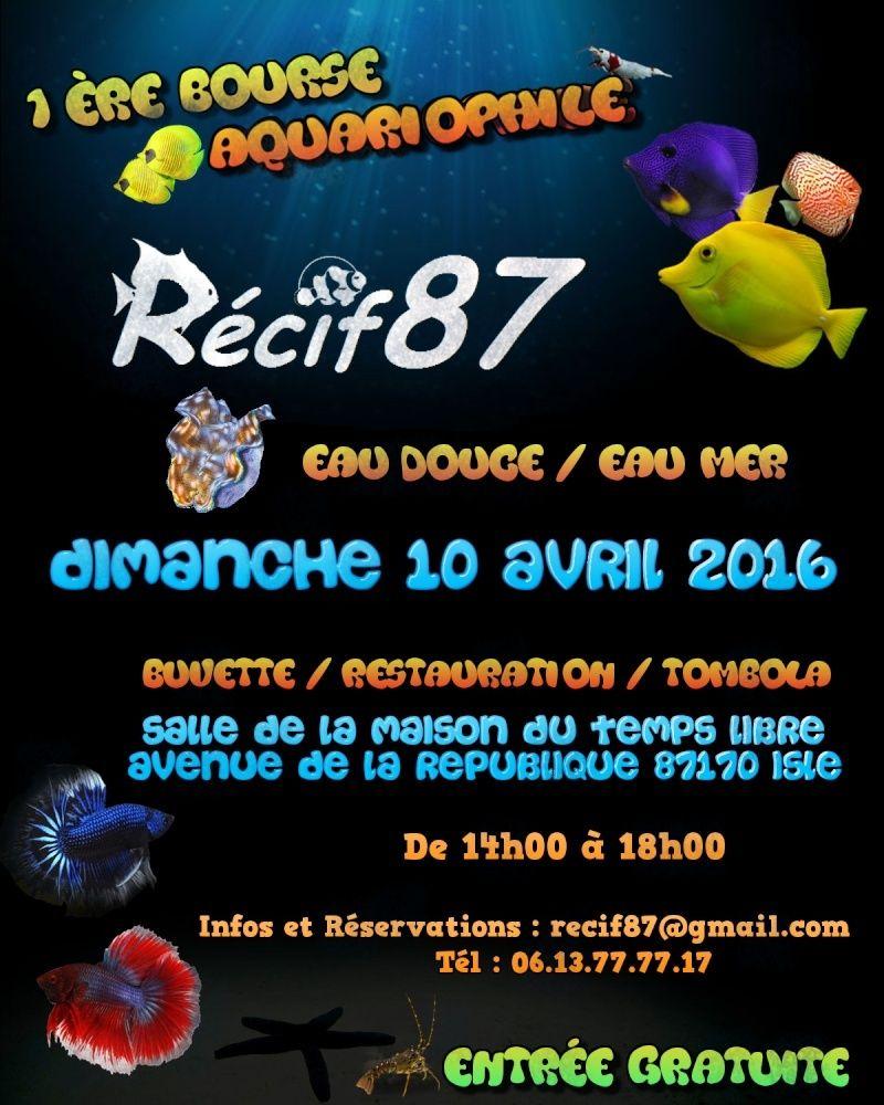 Bourse association Récif 87 Image16