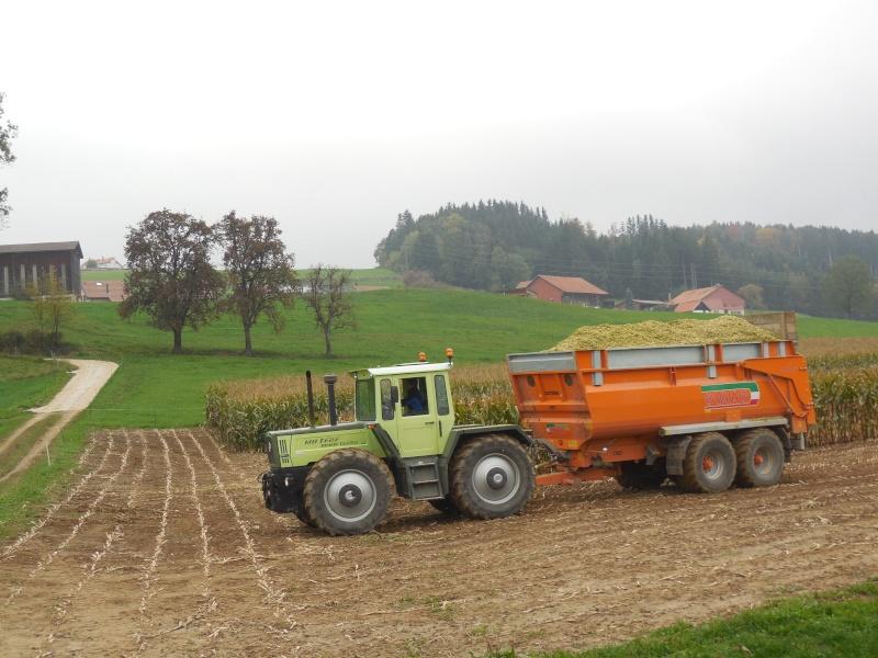 Bonjour de Suisse 01310