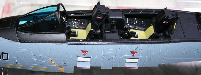 tomcat - F-14 Tomcat Img_1411
