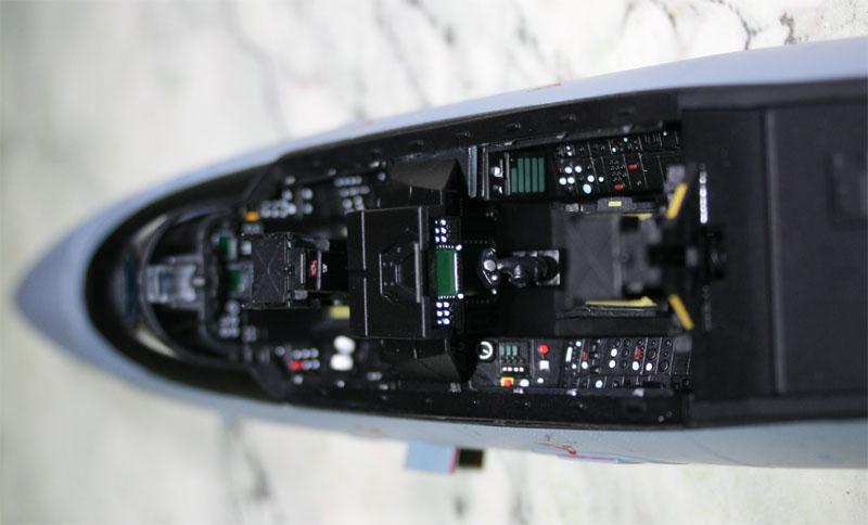 tomcat - F-14 Tomcat Img_1416