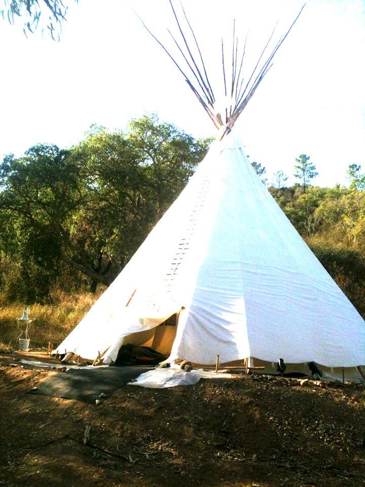 Les révélations de l'Ayahuasca  187
