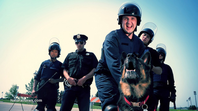 DRUG-SNIFFING DOGS ARE A LAW ENFORCEMENT HOAX, SIGNALING DRUG ALERTS EVEN WHEN NO DRUGS ARE PRESENT Author10
