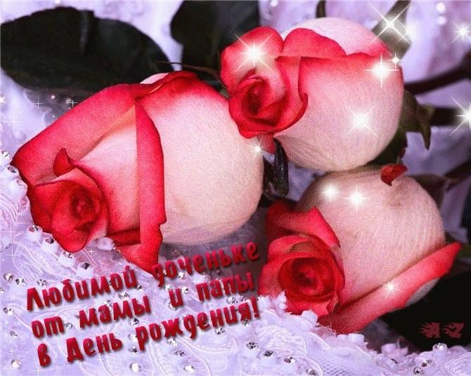 ВОСТОЧНО-ЕВРОПЕЙСКАЯ ОВЧАРКА ВЕОЛАР ЗАЯНА - Страница 3 11031910
