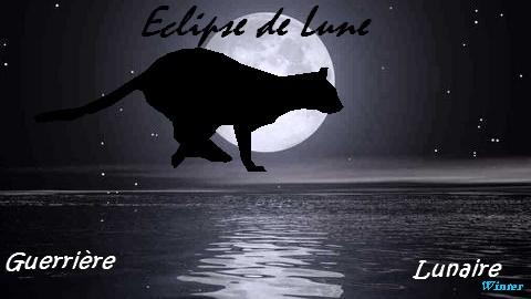 Eclipse de Lune Clair-10
