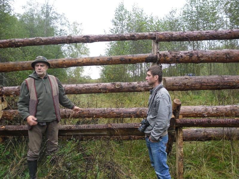 В «Смоленском поозерье» будут разводить зубров 173