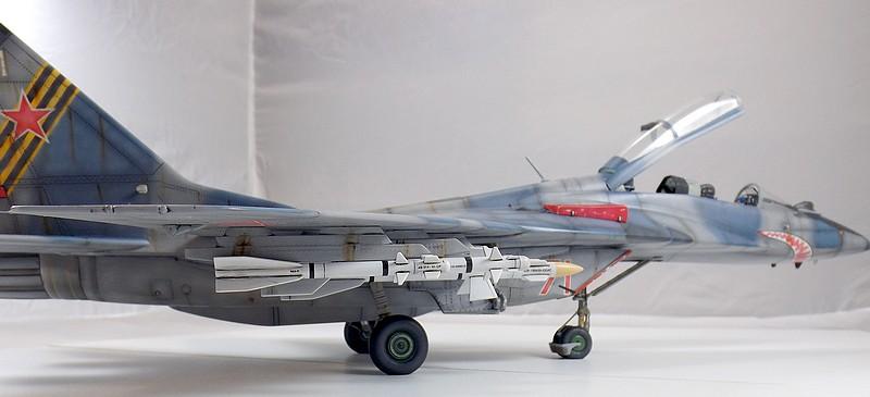 Mikoyan-Gourevitch MiG-29 UB au 1/32 Dscf2334