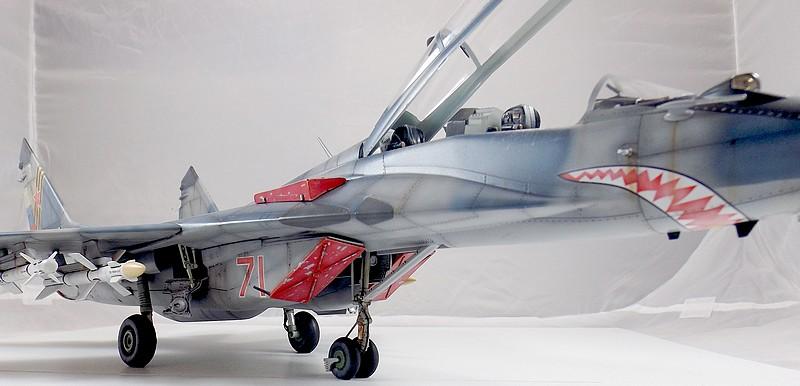 Mikoyan-Gourevitch MiG-29 UB au 1/32 Dscf2337