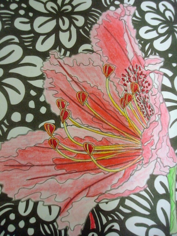 ESSAIS DE DEGRADES : crayons aquarellables, crayons pastels secs Essais10