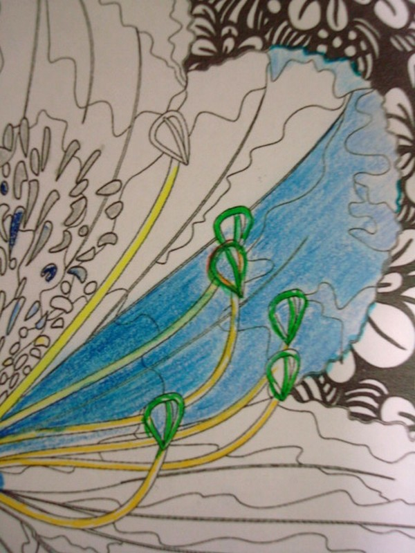 ESSAIS DE DEGRADES : crayons aquarellables, crayons pastels secs Essais11