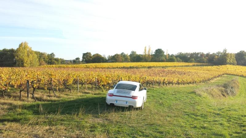 Porsche en automne Autumn11