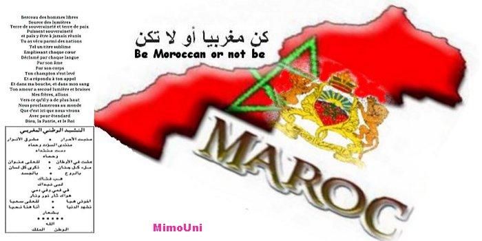 40 eme Anniversaire de la marche verte Marocaine Maroc_11