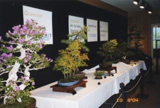 American Bonsai at the NC Arboretum - Page 23 2004_e10