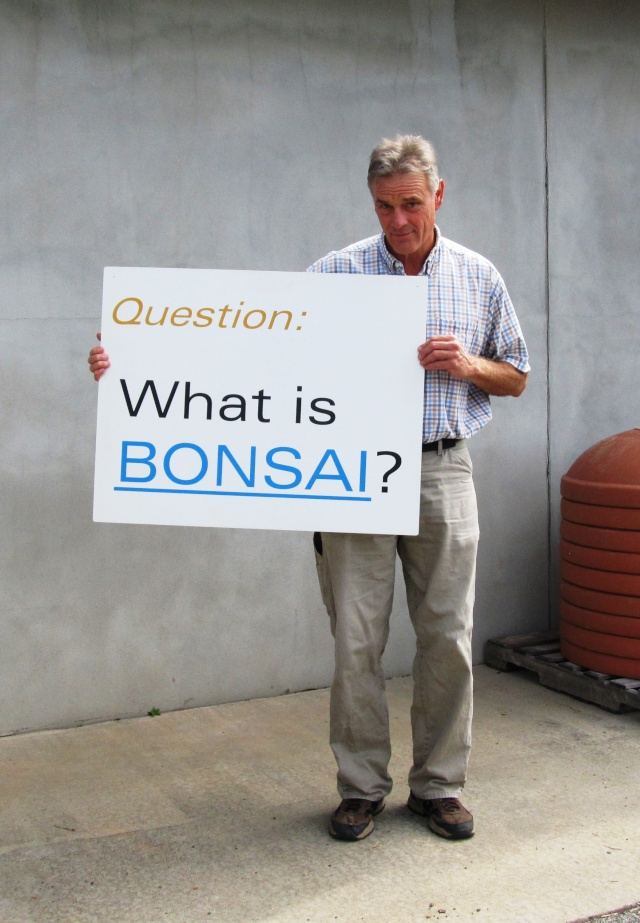American Bonsai at the NC Arboretum - Page 23 Img_9012