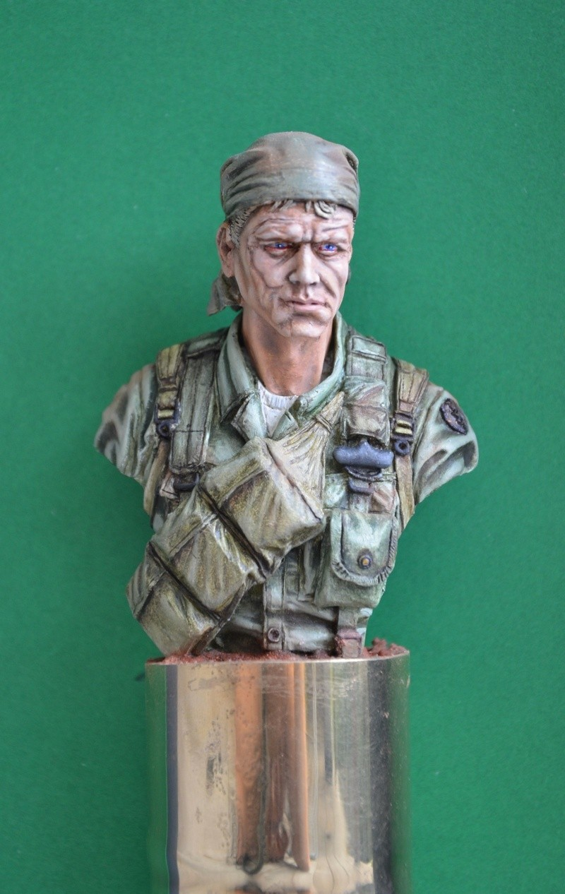 bust Staff Sergeant US Army 25th Infantry Division, Vietnam  Dsc_0022